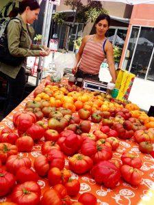 Marsha Habib of Oya Organics